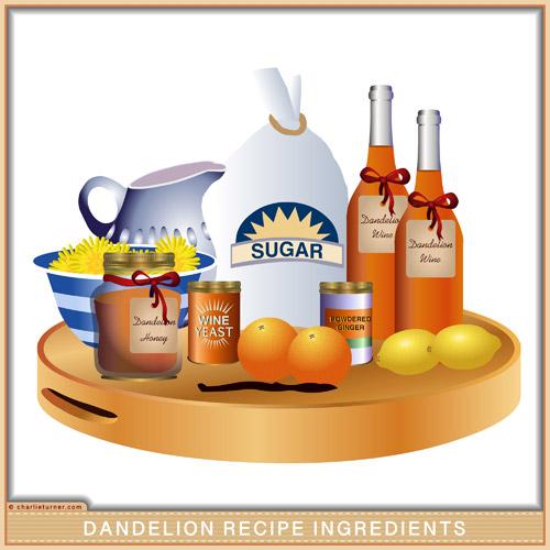 Dandelion Recipe Recipes