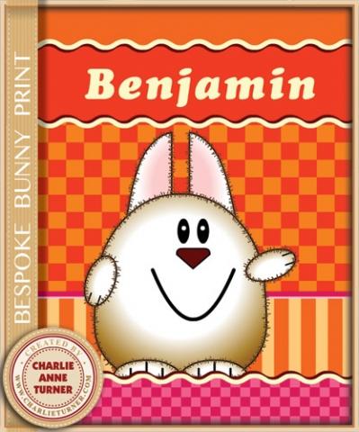 Bespoke Bunny print