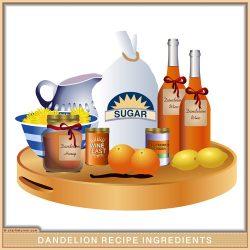 Dandelion Recipe Recipes